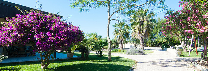 Bed and Breakfast con giardino nel salento